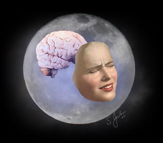 dr. sheldon jordan moon brain art 2020